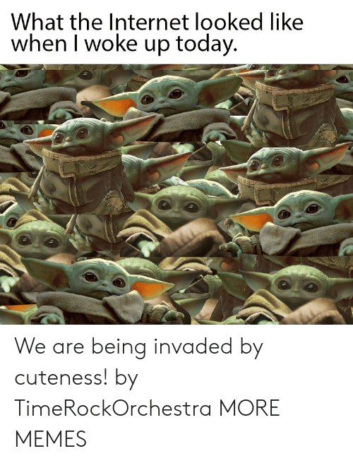 Dank, Internet, and Memes: What the Internet looked like  when I woke up today. We are being invaded by cuteness! by TimeRockOrchestra MORE MEMES