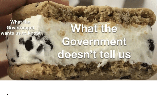Government, What, and What The: What the  overnmen  wants us to know  What the  Government  doesn't tell us