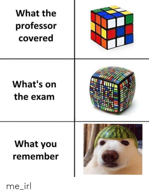 Irl, Me IRL, and Remember: What the  professor  covered  What's on  the exam  What you  remember me_irl