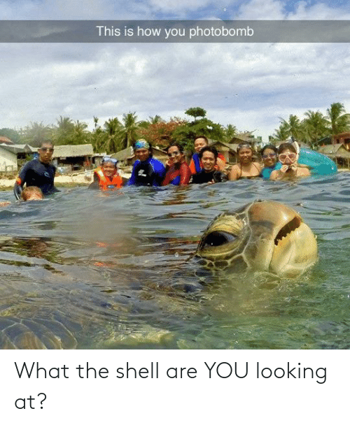 Shell, Looking, and You: What the shell are YOU looking at?