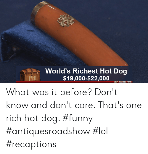 Funny, Lol, and Dog: What was it before? Don't know and don't care. That's one rich hot dog. #funny #antiquesroadshow #lol #recaptions