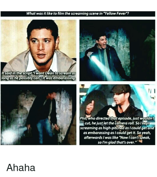 "Memes, Scream, and Camera: What was it like to film the screaming scene in Yellow Fever""?  It said in the script want Dean to scream as  long as he possiblycan ltwasembarassing  Phil, who directed that episode, just wouldn't  cut, he just let the camera roll. Solkept  screaming as high-pitched as/could getand  as embarassing asicould get it. So yeah,  afterwards I was like ""Now Ican't speak,  so I'm glad that's over. Ahaha"