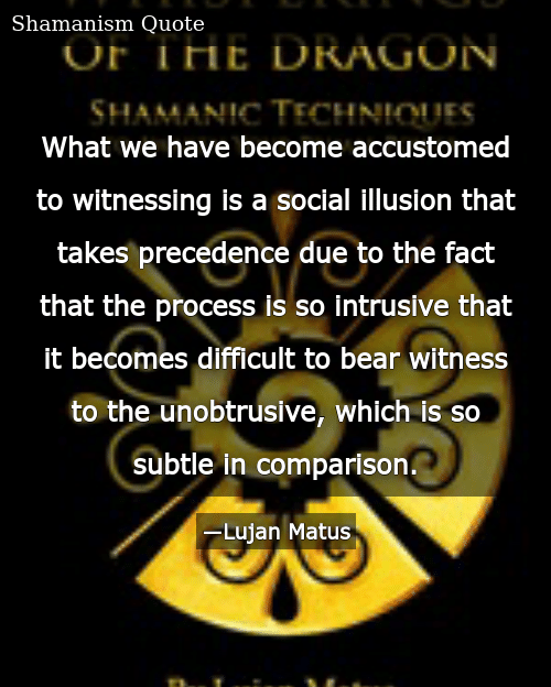 What We Have Become Accustomed to Witnessing Is a Social