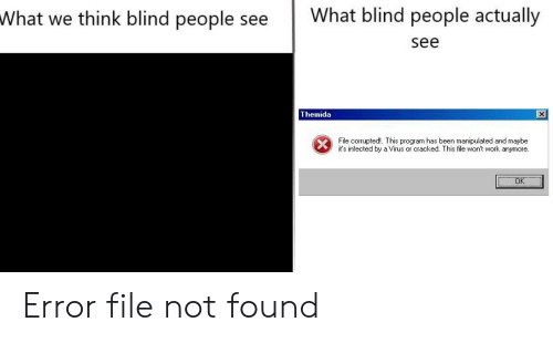 What We Think Blind People See What Blind People Actually