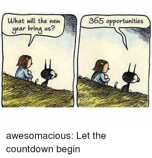 Countdown, New Year's, and Tumblr: What will the new  year bring us?  365 opportunities awesomacious:  Let the countdown begin