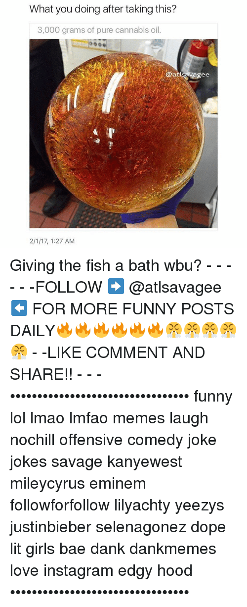Eminem, Memes, and Yeezy: What you doing after taking this?  3,000 grams of pure cannabis oil.  @atlsavagee  2/1/17, 1:27 AM Giving the fish a bath wbu? - - - - - -FOLLOW ➡️ @atlsavagee ⬅️ FOR MORE FUNNY POSTS DAILY🔥🔥🔥🔥🔥🔥😤😤😤😤😤 - -LIKE COMMENT AND SHARE!! - - - ••••••••••••••••••••••••••••••••• funny lol lmao lmfao memes laugh nochill offensive comedy joke jokes savage kanyewest mileycyrus eminem followforfollow lilyachty yeezys justinbieber selenagonez dope lit girls bae dank dankmemes love instagram edgy hood •••••••••••••••••••••••••••••••••