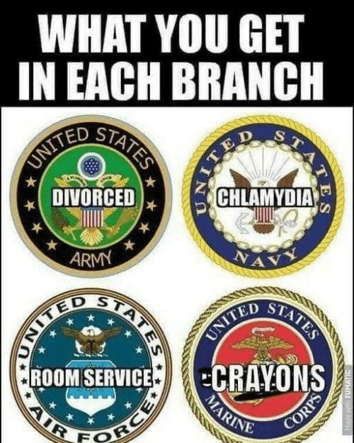Ted, Army, and You: WHAT YOU GET  IN EACH BRANCH  TED ST  DIVORCED  ) .  ARMY  D ST  ROOM SERVICECRAYONS  INE  FO
