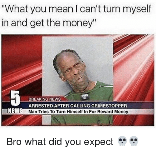 """Funny, Money, and News: What you mean I can't turn myself  in and get the money""""  BREAKING NEWS  ARRESTED AFTER CALLING CRIMESTOPPER  Man Tries To Turn Himself In For Reward Money  NE  t: Bro what did you expect 💀💀"""