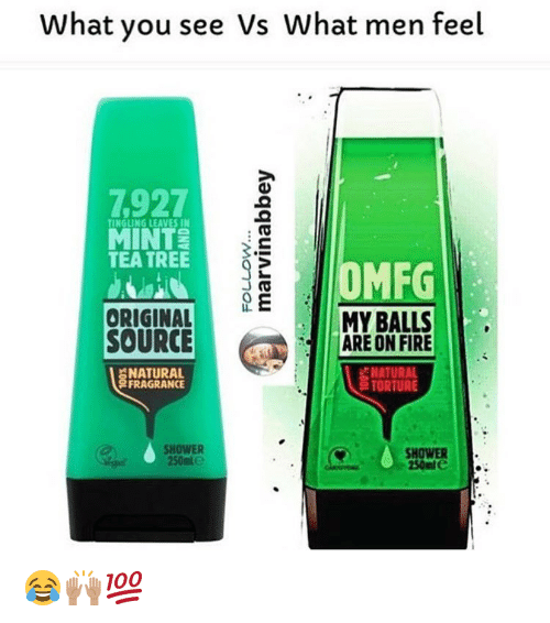 Fire, Memes, and Shower: What you see Vs What men feel  7927  TINGLING LEAVES IN  TEA TREE  MFG  ME  MY BALLS  ORIGINAL  SOURCE  ARE ON FIRE  6 NATURAL  FRAGRANCE  TORTURE  SHOWER  SHOWER  250ml e 😂🙌🏽💯