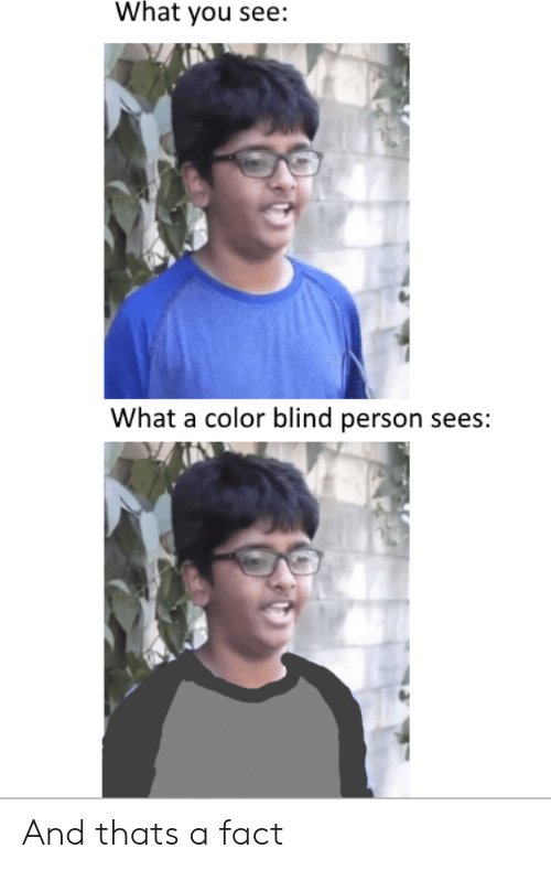 What You See What a Color Blind Person Sees and Thats a Fact | Color