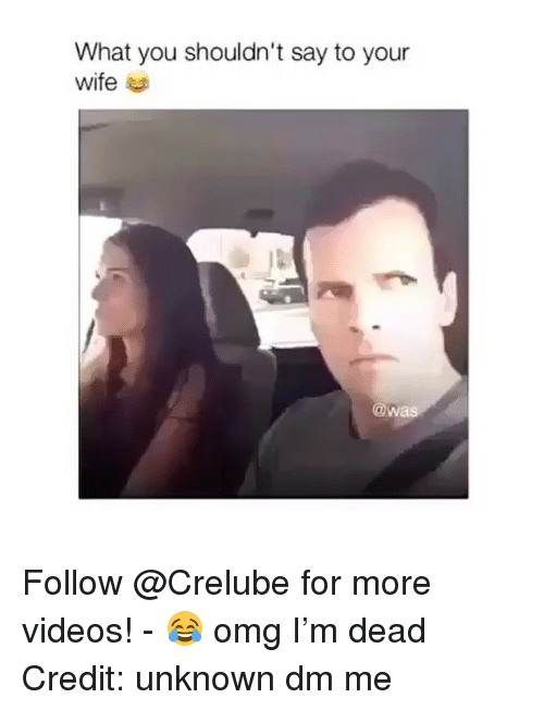 Memes, Omg, and Videos: What you shouldn't say to your  wife  @w Follow @Crelube for more videos! - 😂 omg I'm dead Credit: unknown dm me