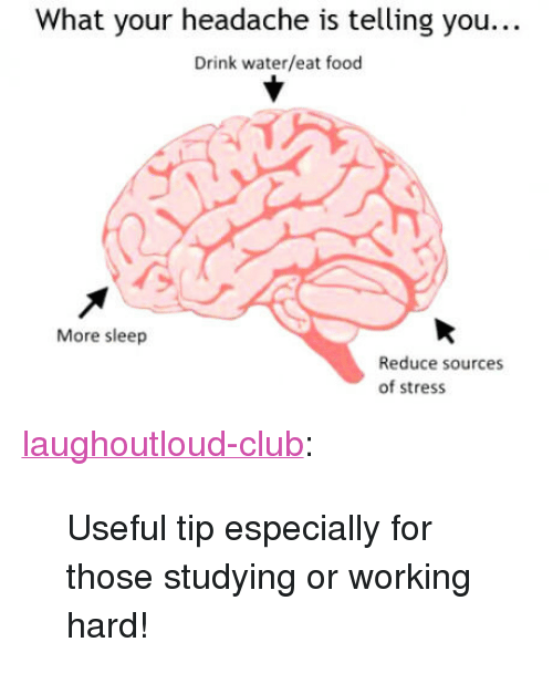 "Club, Food, and Tumblr: What your headache is telling you...  Drink water/eat food  More sleep  Reduce sources  of stress <p><a href=""http://laughoutloud-club.tumblr.com/post/159496706294/useful-tip-especially-for-those-studying-or"" class=""tumblr_blog"">laughoutloud-club</a>:</p>  <blockquote><p>Useful tip especially for those studying or working hard!</p></blockquote>"