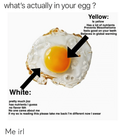 Global Warming, Jizz, and Tbh: what's actually in your egg?  Yellow:  Is yellow  Has a lot of nutrients  Prevents Mesothelioma  feels good on your teeth  Believes in global warming  White:  pretty much jizz  has nutrients I guess  no flavor tbh  No one cares about me  If my ex is reading this please take me back I'm different now I swear Me irl
