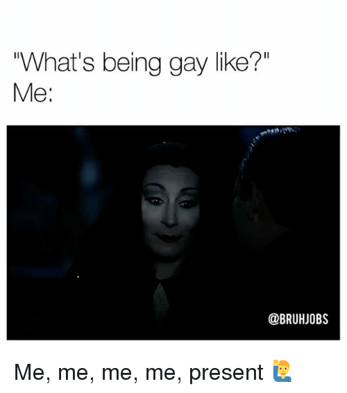 "Memes, 🤖, and Gay: ""What's being gay like?""  Me:  @BRUHJOBS Me, me, me, me, present 🙋‍♂️"