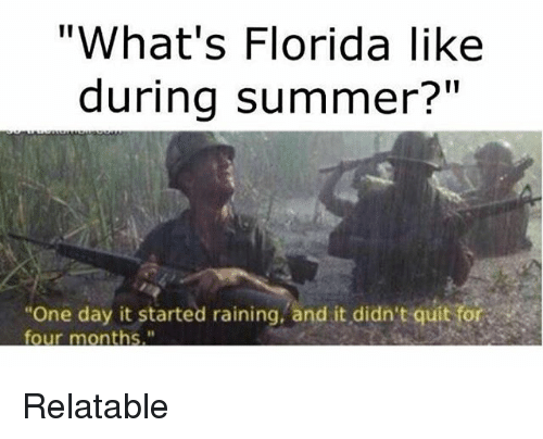 whats florida like during summer one day it started raining 3366274 what's florida like during summer? one day it started raining and
