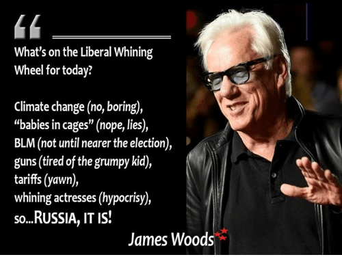 "Guns, Memes, and Russia: What's on the Liberal Whining  Wheel for today?  Climate change (no, boring),  ""babies in cages"" (nope, lies),  BLM (not until nearer the election),  guns (tired of the grumpy kid),  tariffs (yawn)  whining actresses (hypocrisy)  so...RUSSIA, IT IS!  James Woods"