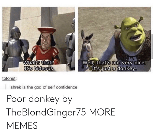 Confidence, Dank, and Donkey: Whats that?  It's hideous  Well, that's not very nice.  It's just a donkey  totonut:  shrek is the god of self confidence Poor donkey by TheBlondGinger75 MORE MEMES