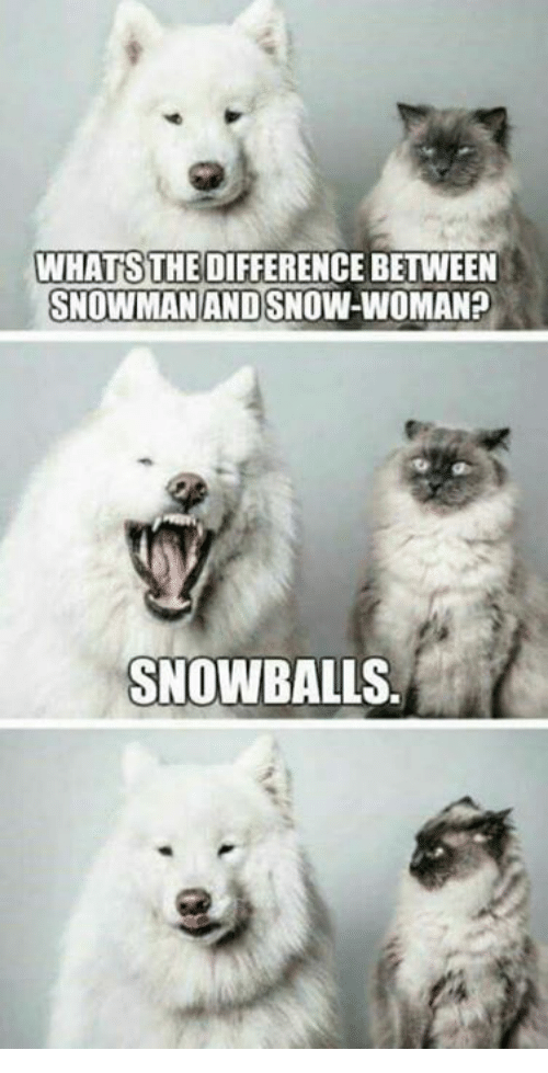 whats the difference between snowman and snow woman snowballs 30702421 whats the difference between snowman and snow woman? snowballs