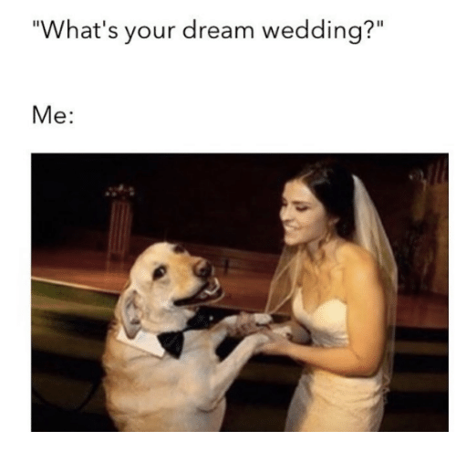 """Dank, Wedding, and Dreams: """"What's your dream wedding?""""  Me"""
