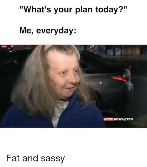 """Ironic, News, and Today: """"What's your plan today?""""  Me, everyday:  WCCB NEWS@TEN Fat and sassy"""