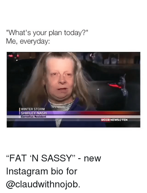 """Instagram, News, and Winter: """"What's your plan today?""""  Me, everyday:  WINTER STORM  SHIRLEY NASH  Cornelius Resident  WCCB NEWS@TEN """"FAT 'N SASSY"""" - new Instagram bio for @claudwithnojob."""