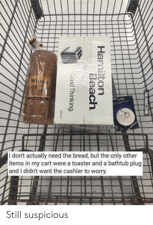 9gag, Beach, and Hamilton: Wheat  veala  I don't actually need the bread, but the only other  items in my cart were a toaster and a bathtub plug  and I didn't want the cashier to worry.  VIA 9GAG.COM  Hamilton  Beach  Ccod Thinking  226142 Still suspicious