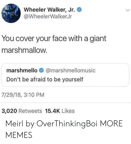 Dank, Memes, and Target: Wheeler Walker, Jr.  @WheelerWalkerJr  You cover your face with a giant  marshmallow  marshmello @marshmellomusic  Don't be afraid to be yourself  7/29/18, 3:10 PM  3,020 Retweets 15.4K Likes Meirl by OverThinkingBoi MORE MEMES