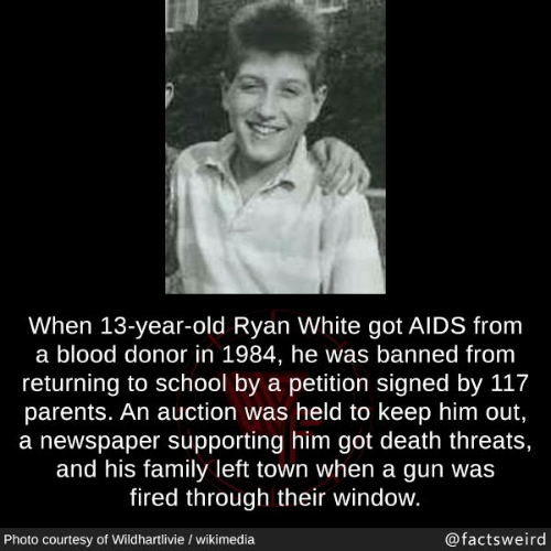 Family, Memes, and Parents: When 13-year-old Ryan White got AIDS from  a blood donor in 1984, he was banned from  returning to school by a petition signed by 117  parents. An auction was held to keep him out,  a newspaper supporting him got death threats,  and his family left town when a gun was  fired through their window.  Photo courtesy of Wildhartlivie / wikimedia  @factsweird