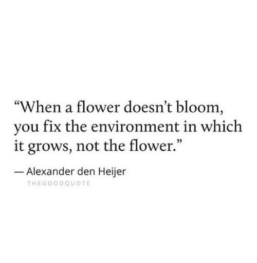 """Flower, Alexander, and Bloom: """"When a flower doesn't bloom,  vou fix the environment in which  it grows, not the flower.""""  05  Alexander den Heijer  THEGOODQUOTE"""