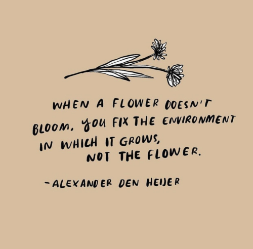 Flower, Alexander, and You: WHEN A FLOWER DOESNT  IN WHICH IT GROWS  - ALEXANDER DEN HEDE R  gloom, You FIX THE ENVIRONMENT  NOT THE FLOWER.