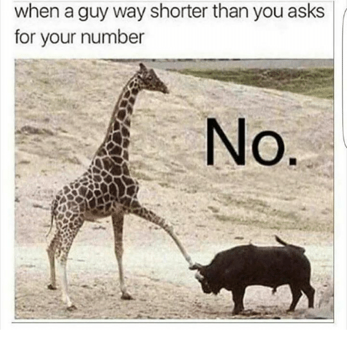 Funny, Asks, and You: when a guy way shorter than you asks  for your number