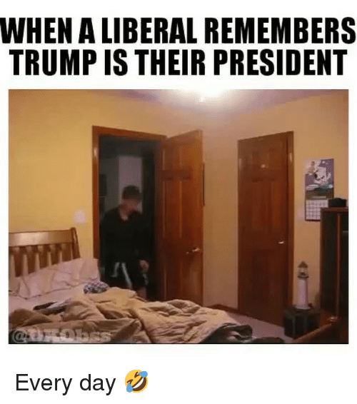 Memes, Trump, and 🤖: WHEN A LIBERAL REMEMBERS  TRUMP IS THEIR PRESIDENT Every day 🤣