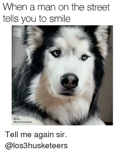 Memes, Smile, and 🤖: When a man on the street  tells you to smile  @bark  @los3huskateers Tell me again sir. @los3husketeers