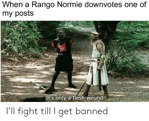 Dank Memes, Normie, and Fight: When a Rango Normie downvotes one of  my posts  It's only a flesh wound I'll fight till I get banned