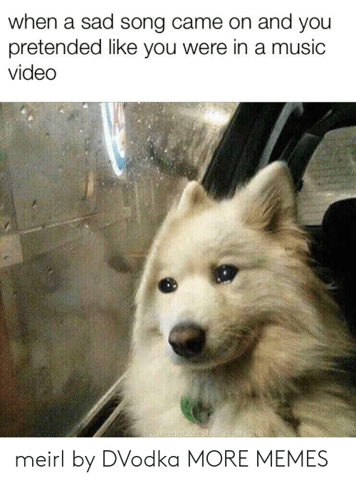 Dank, Memes, and Music: when a sad song came on and you  pretended like vou were in a music  video meirl by DVodka MORE MEMES