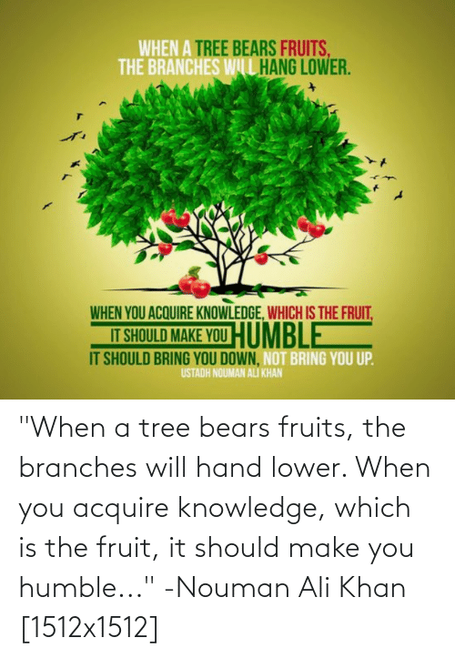 """Ali, Bears, and Humble: """"When a tree bears fruits, the branches will hand lower. When you acquire knowledge, which is the fruit, it should make you humble..."""" -Nouman Ali Khan [1512x1512]"""
