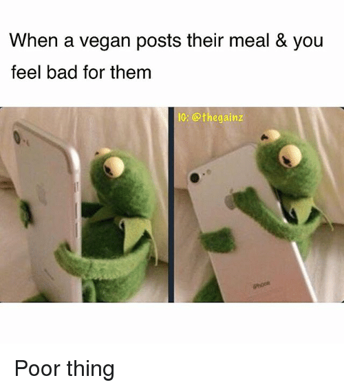 Bad, Memes, and Vegan: When a vegan posts their meal & you  feel bad for thenm  IC: @thegainz Poor thing
