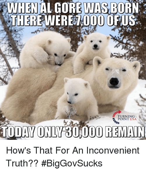 when al gore was born 0000 us turning point usa 14557714 when al gore was born 0000 us turning point usa today only 30000