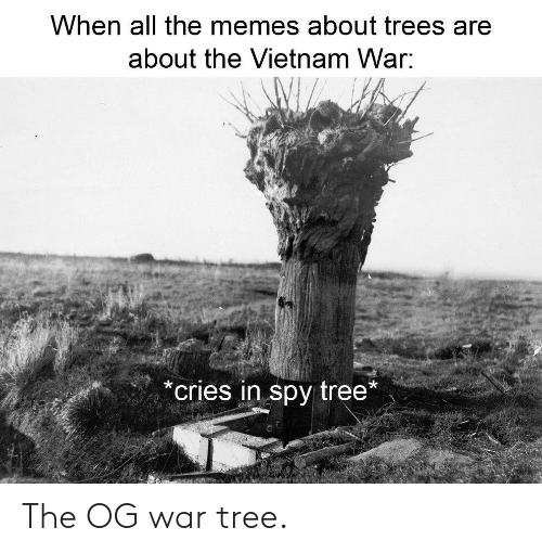 When All The Memes About Trees Are About The Vietnam War Cries In Spy Tree The Og War Tree Meme On Me Me