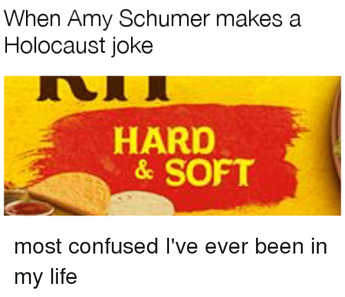 Amy Schumer, Confused, and Life: When Amy Schumer makes a  Holocaust joke  HARO  & SOFT