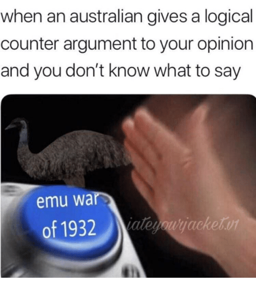 Australian, War, and Emu: when an australian gives a logical  counter argument to your opinion  and you don't know what to say  emu war  of 1932teacketo