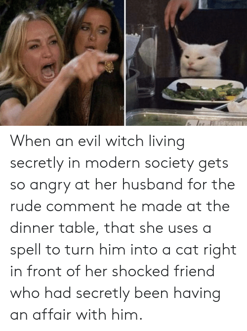 Rude, Husband, and Angry: When an evil witch living secretly in modern society gets so angry at her husband for the rude comment he made at the dinner table, that she uses a spell to turn him into a cat right in front of her shocked friend who had secretly been having an affair with him.