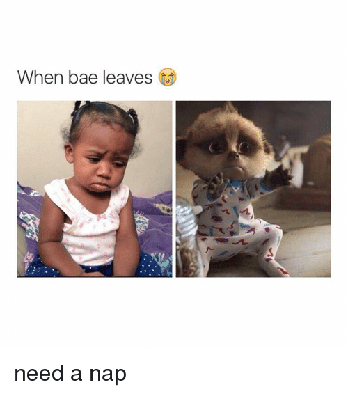 Girl Memes, Leaving, and Needed: When bade leaves need a nap