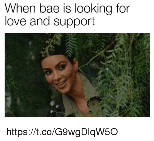Bae, Love, and Memes: When bae is looking for  love and support https://t.co/G9wgDlqW5O