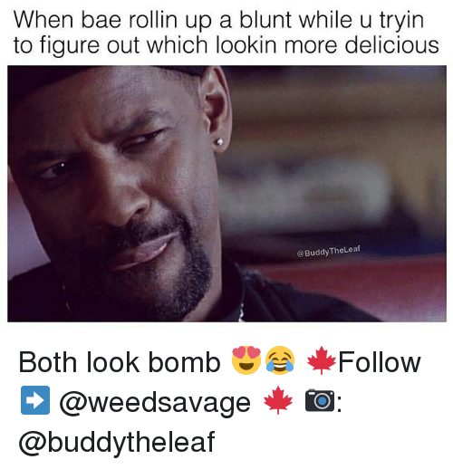 Bae, Memes, and 🤖: When bae rollin up a blunt while u tryin  to figure out which lookin more delicious  @BuddyTheLeaf Both look bomb 😍😂 🍁Follow ➡ @weedsavage 🍁 📷: @buddytheleaf