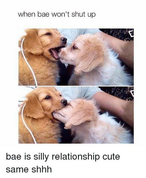 Cute Dating Memes