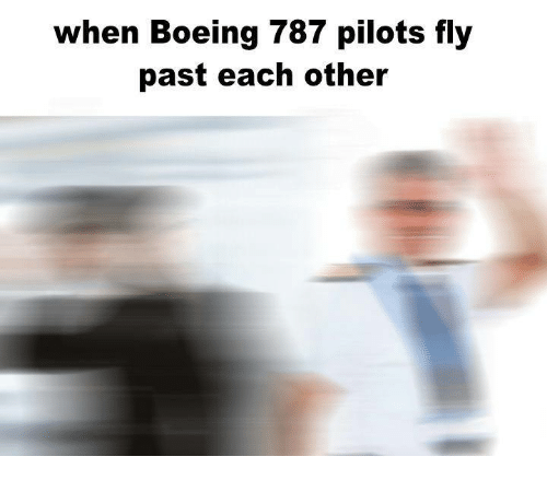 Boeing, Boeing 787, and Fly: when Boeing 787 pilots fly  past each other