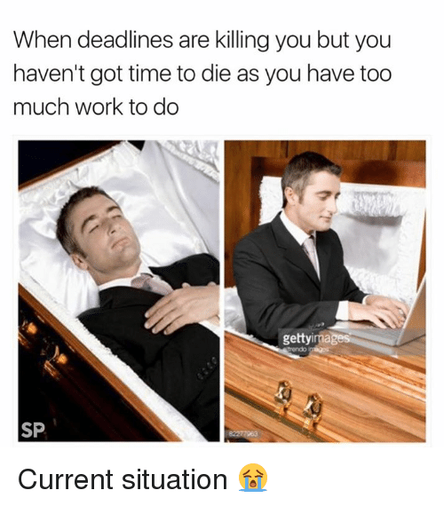 Too Much, Work, and Getty Images: When deadlines are killing you but you  haven't got time to die as you have too  much work to do  getty images  SP Current situation 😭