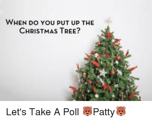 when do you put up the christmas tree let s take a poll patty