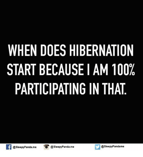 Doe, Memes, and Panda: WHEN DOES HIBERNATION  START BECAUSE I AM 100%  PARTICIPATING IN THAT  f @sleepyPanda.me  O @sleepy Panda.me  @sleepy Pandame